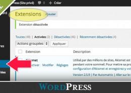 comment-ajouter-extension-wordpress-diane-bourque