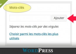 comment-ajouter-mot-cle-wordpress-diane-bourque