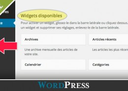 comment-ajouter-widget-wordpress-diane-bourque