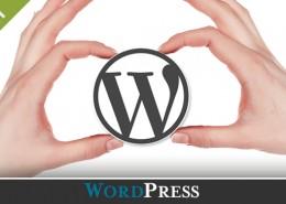 introduction-wordpress-debutants-diane-bourque
