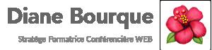 Diane Bourque - Stratège Réseaux Sociaux et Marketing web