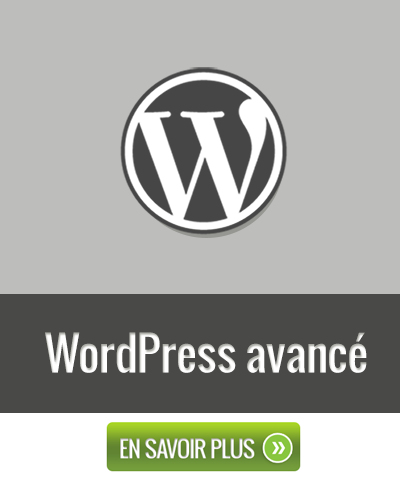Formation - WordPress Avancé