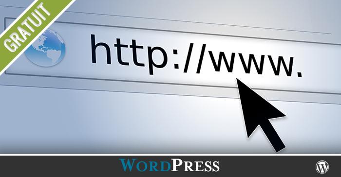 Quelle est la meilleure option des permaliens dans un site WordPress?
