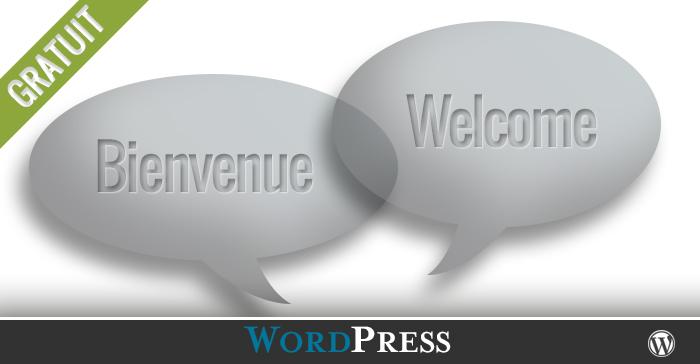 Les options pour un site bilingue ou multilingue WordPress