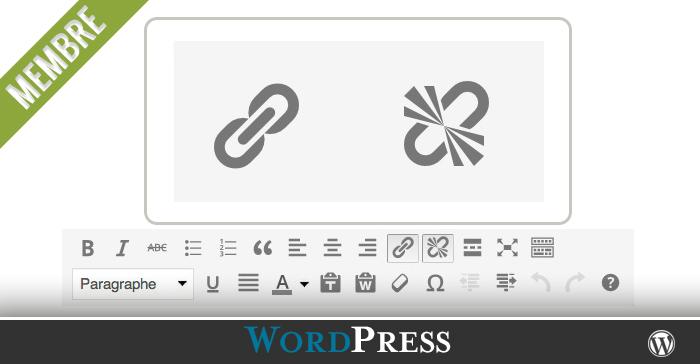 comment ins u00e9rer un lien interne  externe ou courriel dans vos articles et pages wordpress