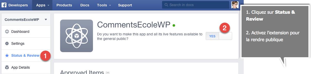 facebook-extension-publique